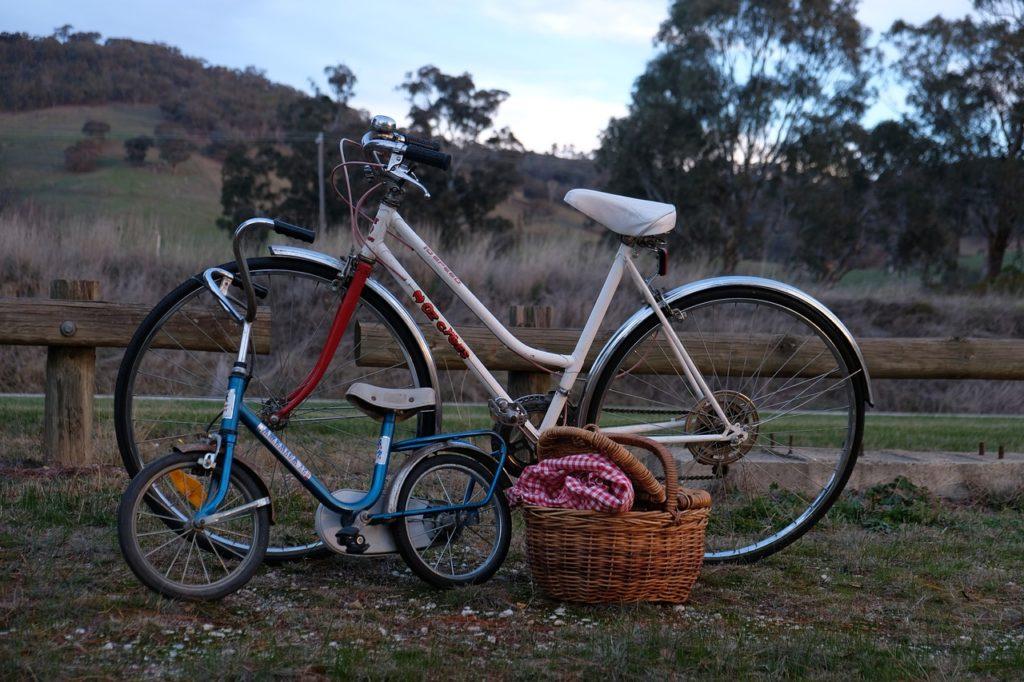 Child Bike  Bikes Picnic Rural  - NEConnect / Pixabay